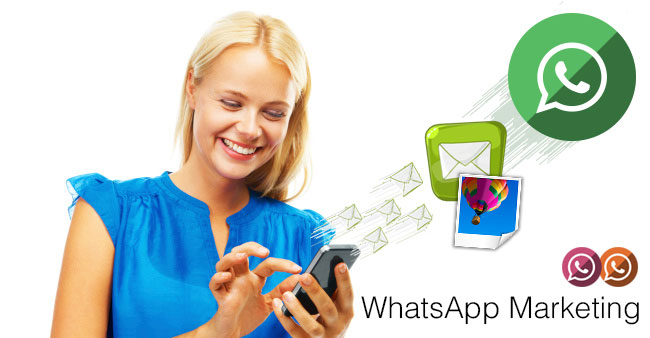 Whatsapp Marketing in Chandigarh
