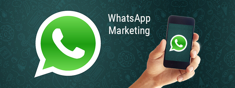 Bulk Whatsapp Marketing in Bangalore | Bulk Whatsapp Service Provider