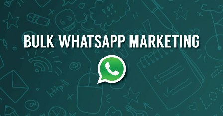 16p Bulk Whatsapp Marketing Chennai